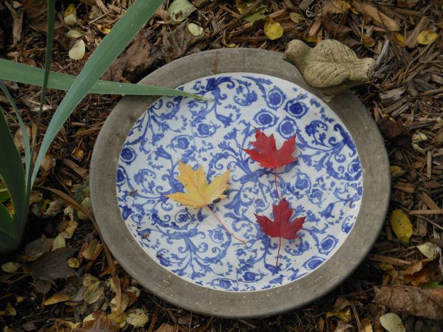 Colorful Maple leaves grace the birdbath on a sunny Autumn day.